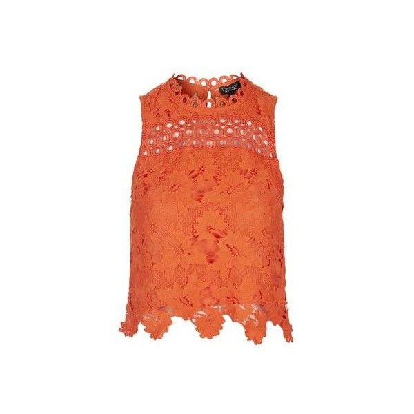 TopShop Petite Lace Panel Shell Top ($52) ❤ liked on Polyvore featuring tops, red, lace detail top, crop top, lace insert top, shell tops and topshop tops