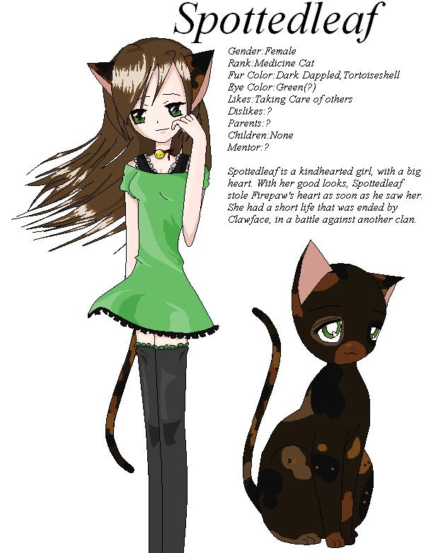 Spottedleaf 3 Warrior Cats Fan Art Series Anime Cat Character