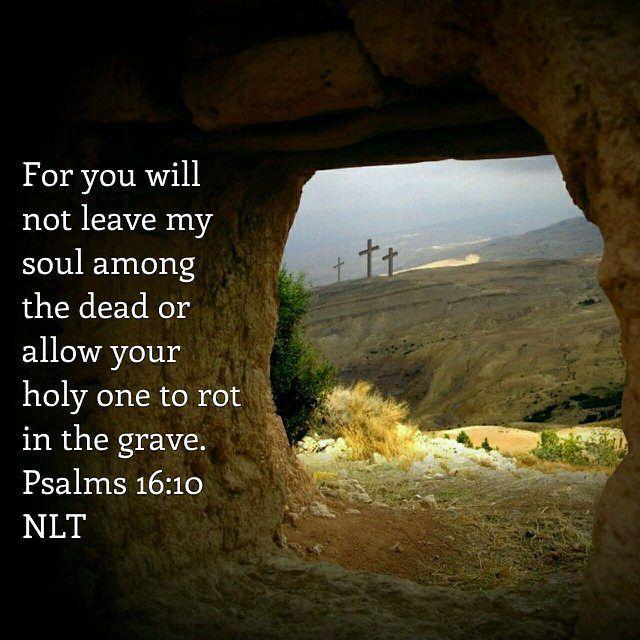 Psalm 16 10 Nlt God Bible Psalms16 Newlivingtranslation New Living Translation The Paraphrase