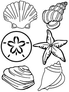 Printable Kids Seashells Crafts Sea Shells Coloring Pages Kids