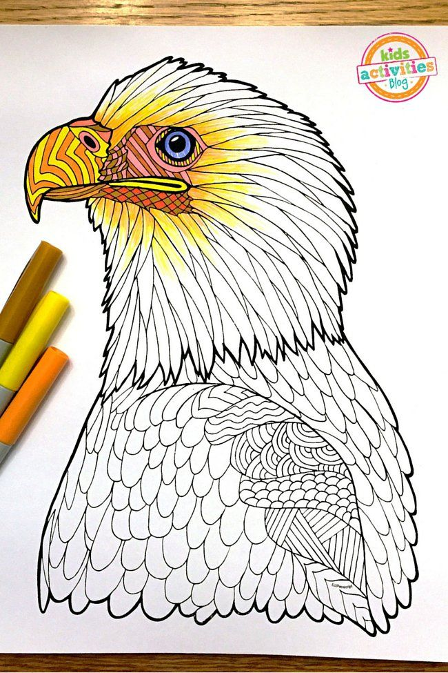 coloring pages for kids bald eagle zentangle