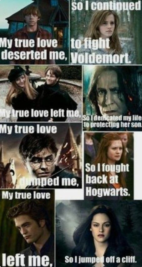 Pin By Heather On Harry Potter Board Harry Potter Twilight Harry Potter Vs Twilight Harry Potter Memes Hilarious