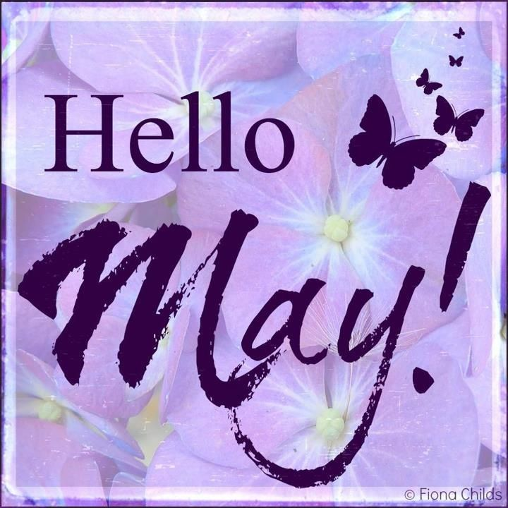 Hello May With Images Hello May Hello May Quotes