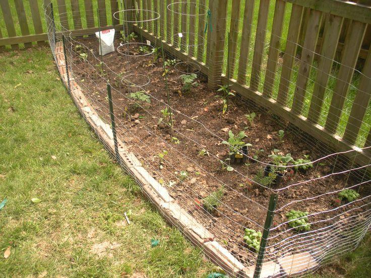 image result for diy deer proof vegetable garden