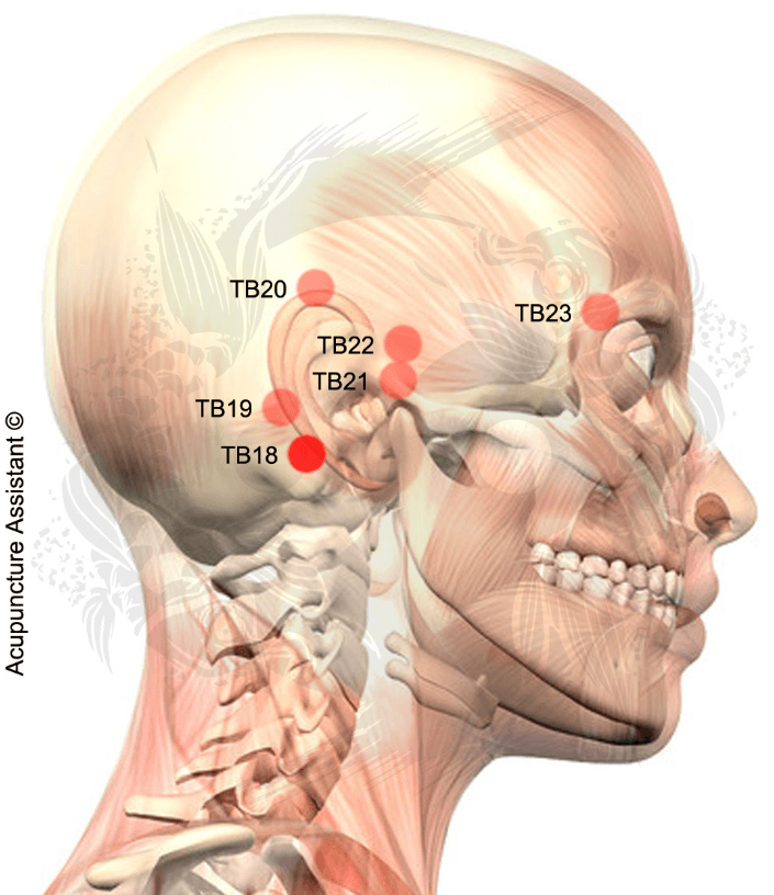 Point Localization On A Depression In The Mastoid Process Behind