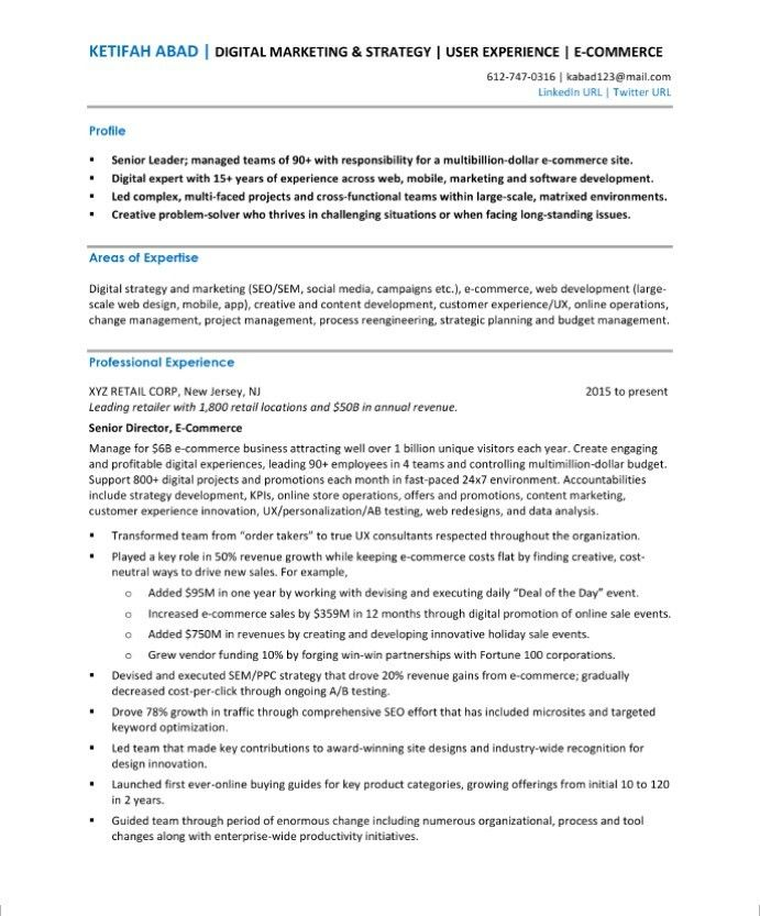 Change Management Resume Ecommerce Director Resume Sample  New Media Resume Samples