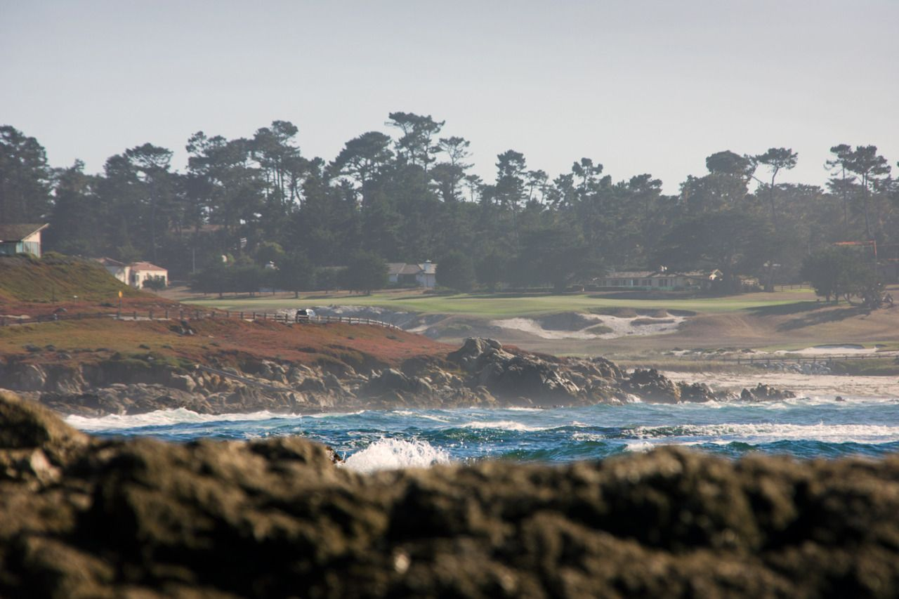 17 mile drive. - #17 #carmel #drive #fotografie #landscape #lensblr #mile #on #photographers #photography #tumblr