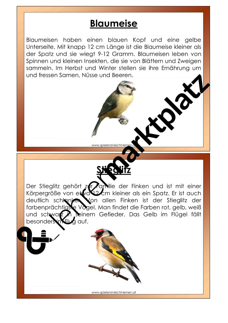 Tolle Dinosaurier Färbung Blatt Bilder - Entry Level Resume Vorlagen ...