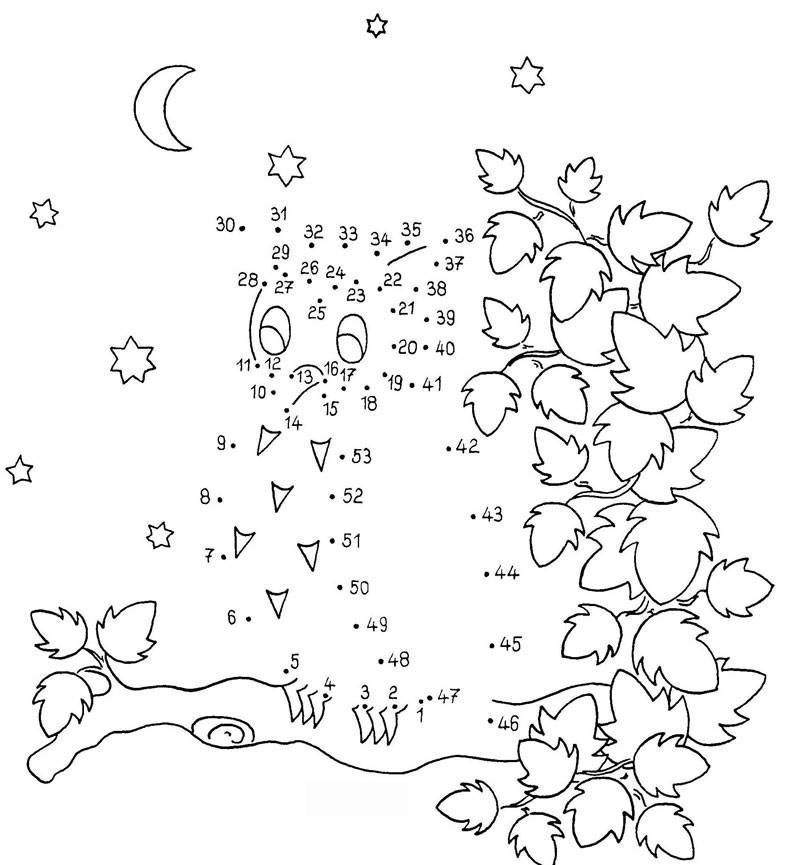 Paint By Numbers Owl Jpg 800 865 In 2020 Malen Nach Zahlen Malen Nach Zahlen Kinder Malen Nach Zahlen Kostenlos