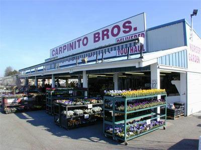 Carpinito Brothers Kent Wa The Best