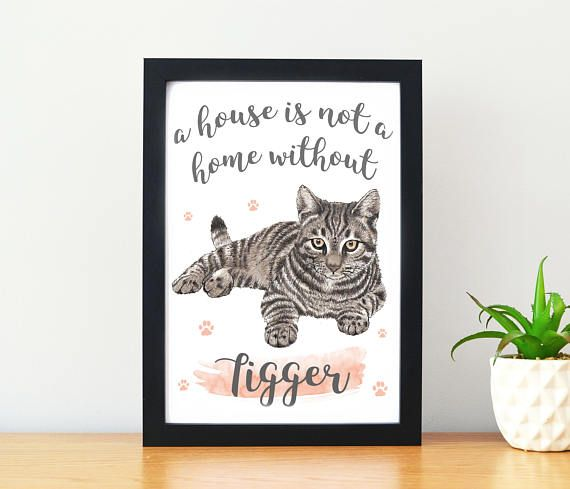 This Crazy Cat Lady Gift Features The Saying A House Is Not A Home