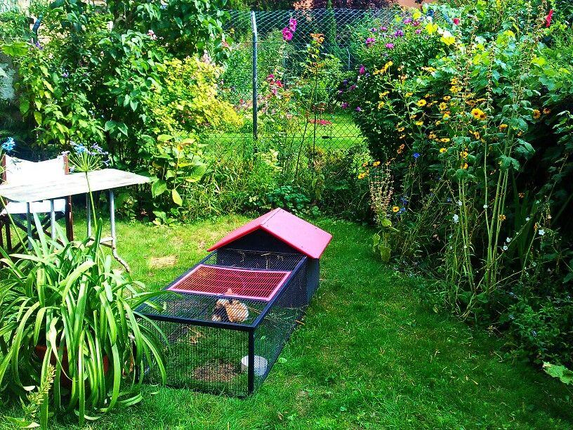 Unten, im Garten