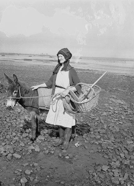 Women collecting cockles in Pen-clawdd, Glamorgan. Teitl Cymraeg/Welsh title: Merched yn casglu cocos ym Mhen-clawdd, Morgannwg. Fotograffydd/Photographer: Geoff Charles (1909-2002). Dyddiad/Date: August 10, 1951 'By permission of Llyfrgell Genedlaethol Cymru/The National Library of Wales', Aberystwyth, Ceredigion (Wales/Cymru).