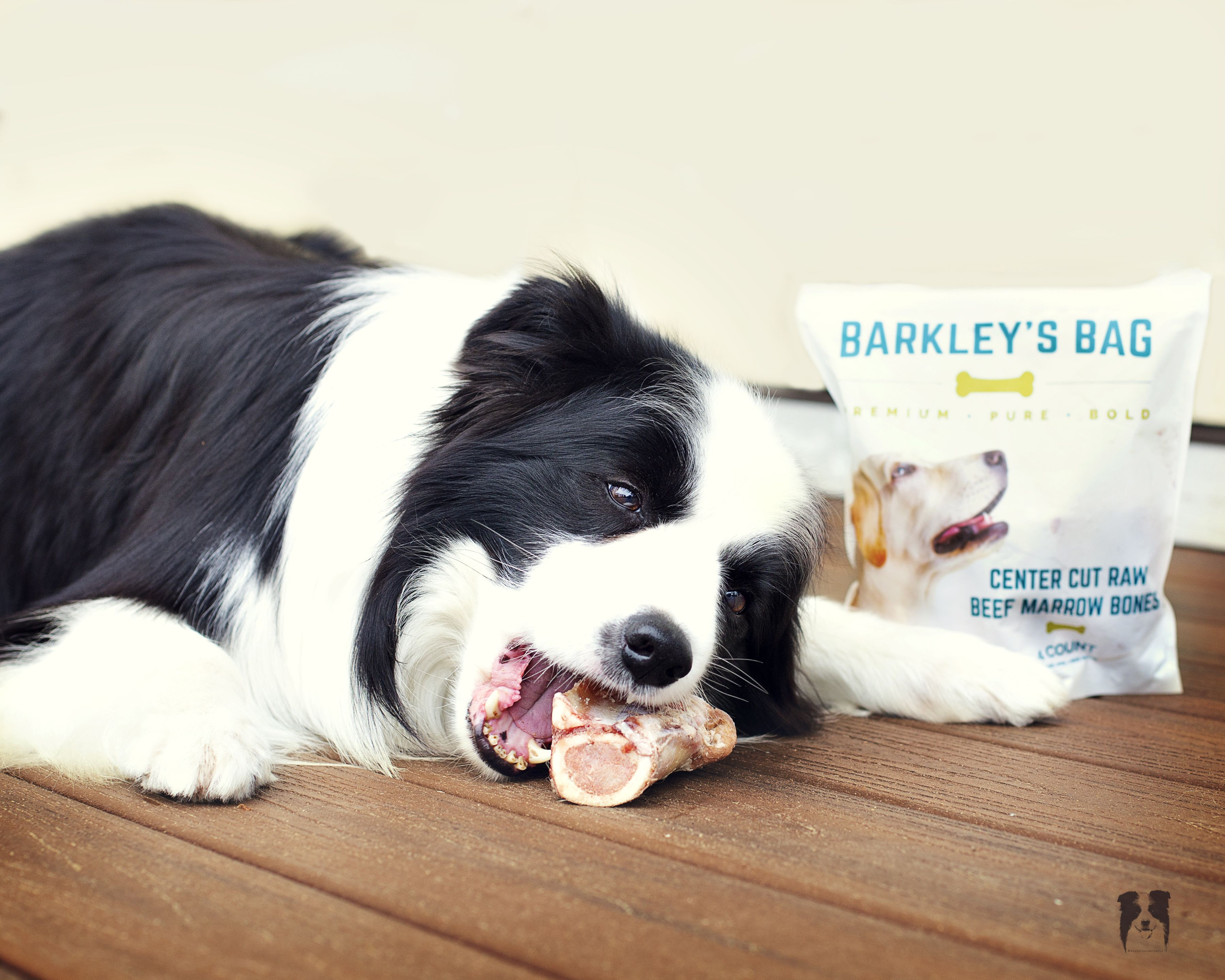 Pin On Barkley S Bag Raw Beef Marrow Bones
