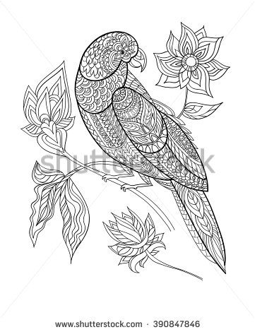 Coloring Book Page Line Art Black And White Vector Illustration Parrot With Fantasy Flowers T Shirt Design Print