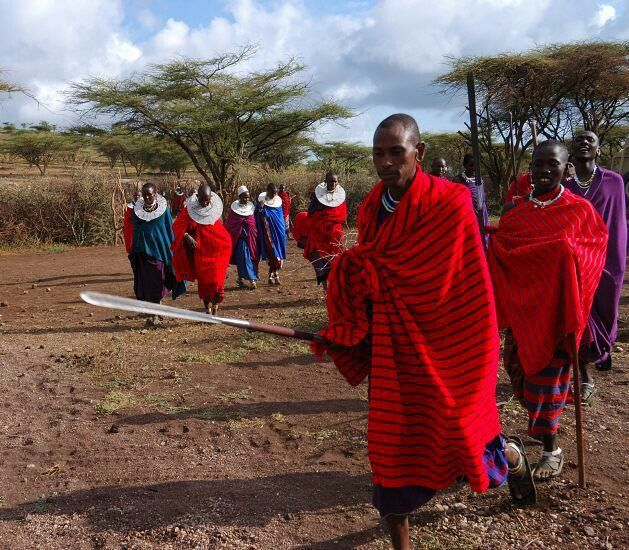 The Maasai Tribe Of Kenya Are A Fearless People Who Hold To Their - Maasai tribe wild animals attend wedding kenya