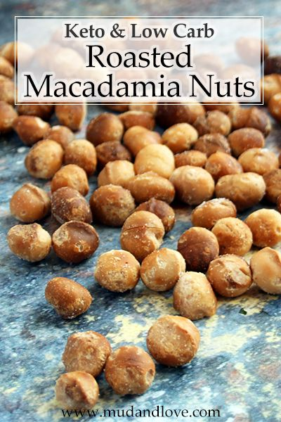 Best Ever Roasted Macadamia Nuts Keto Paleo Mud Love And The Fats Of Life Nut Recipes Healthy Nut Recipes Macadamia Nut Recipes