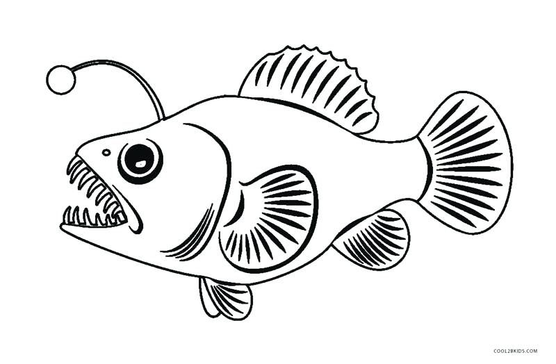 Color Pages Of Fish Angler Fish Coloring Page Online Coloring Fish Coloring Page Rainbow Fish Coloring Page Free Coloring Pictures