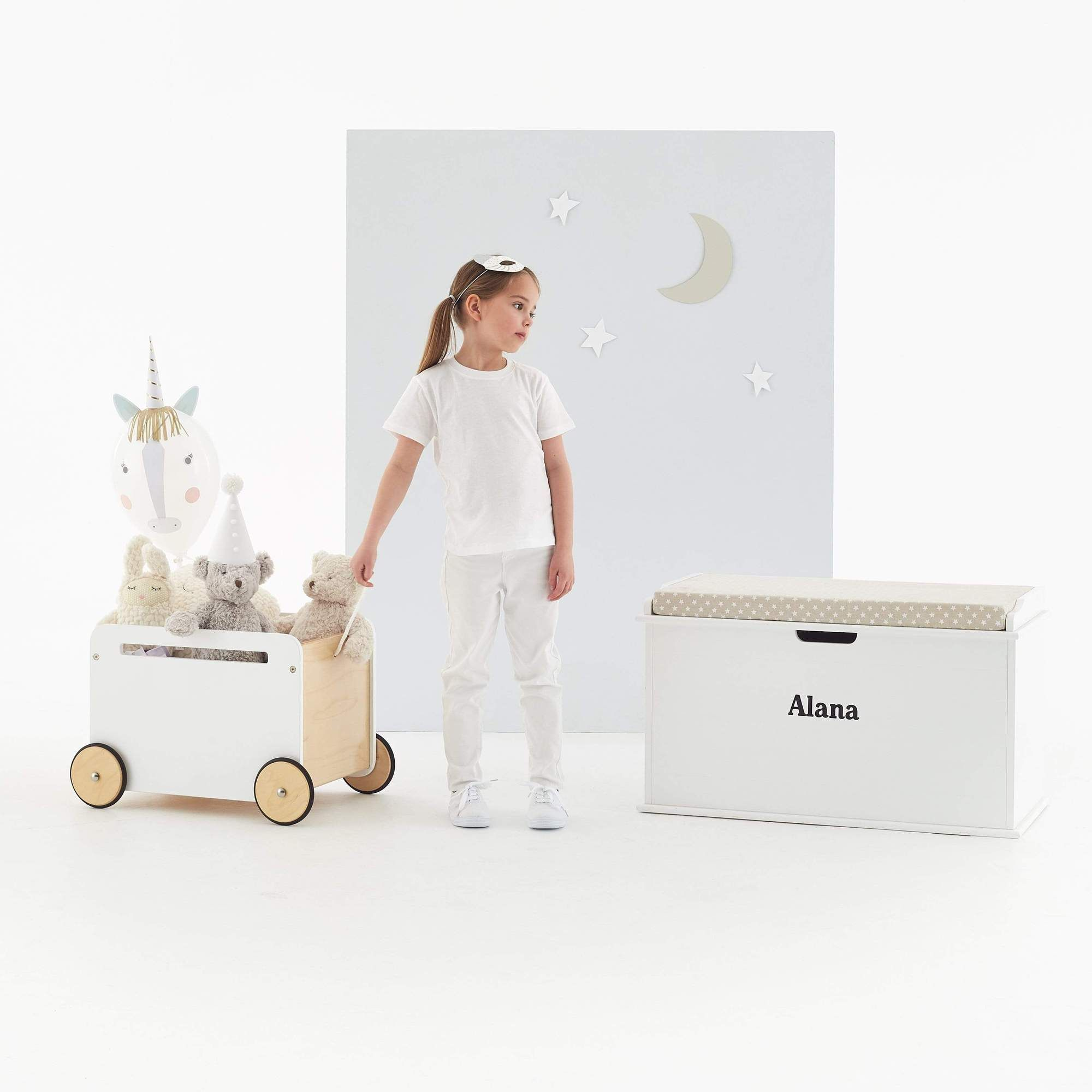 Toni Toy Box On Wheels Toy Storage Boxes Storage Box On Wheels Kids Toy Boxes