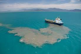 port phillip bay pollution levels - Google Search