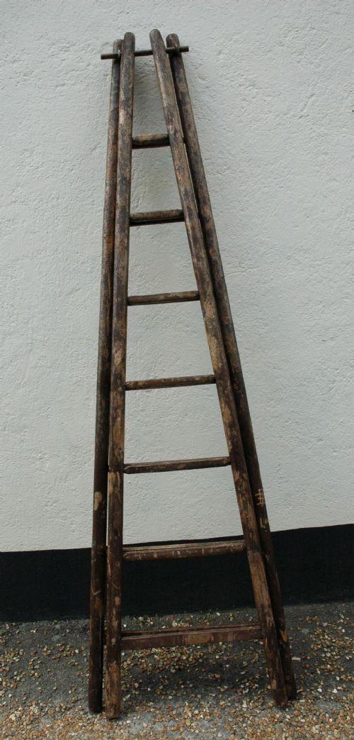 Orchard Ladders C 1900 Ladder Ladder Decor Old Wooden Ladders