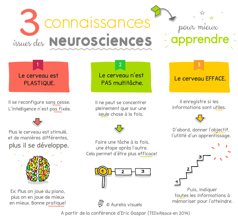 Les Strategies D Apprentissage Regroupees En Fonction Des Profils D Apprentissage Visuel Auditif Kinesthesique Aurelia Visuels Illustratrice Neurosciences Comment Apprendre Methodes D Apprentissage