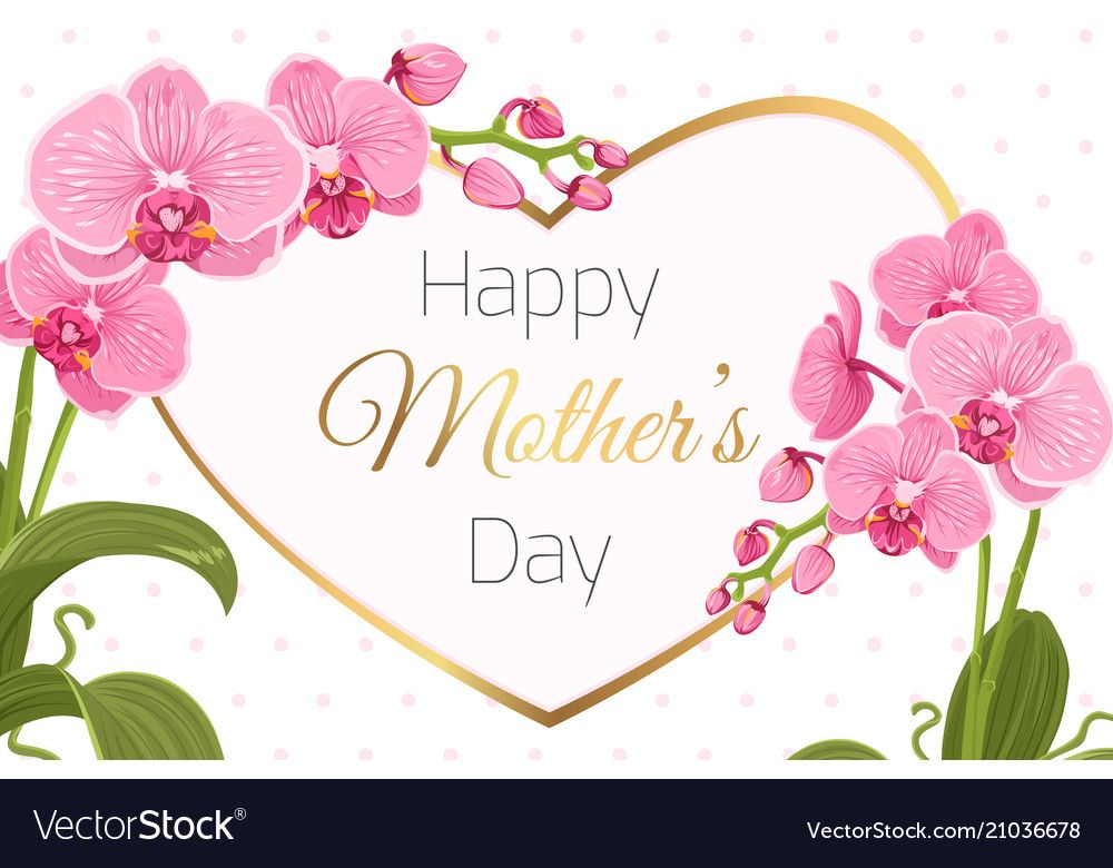 Mothers Day Greeting Card Banner Template Pink Purple Orchid Phalaenopsis Flowers Foli Mothers Day Card Template Mother S Day Greeting Cards Mothers Day Cards