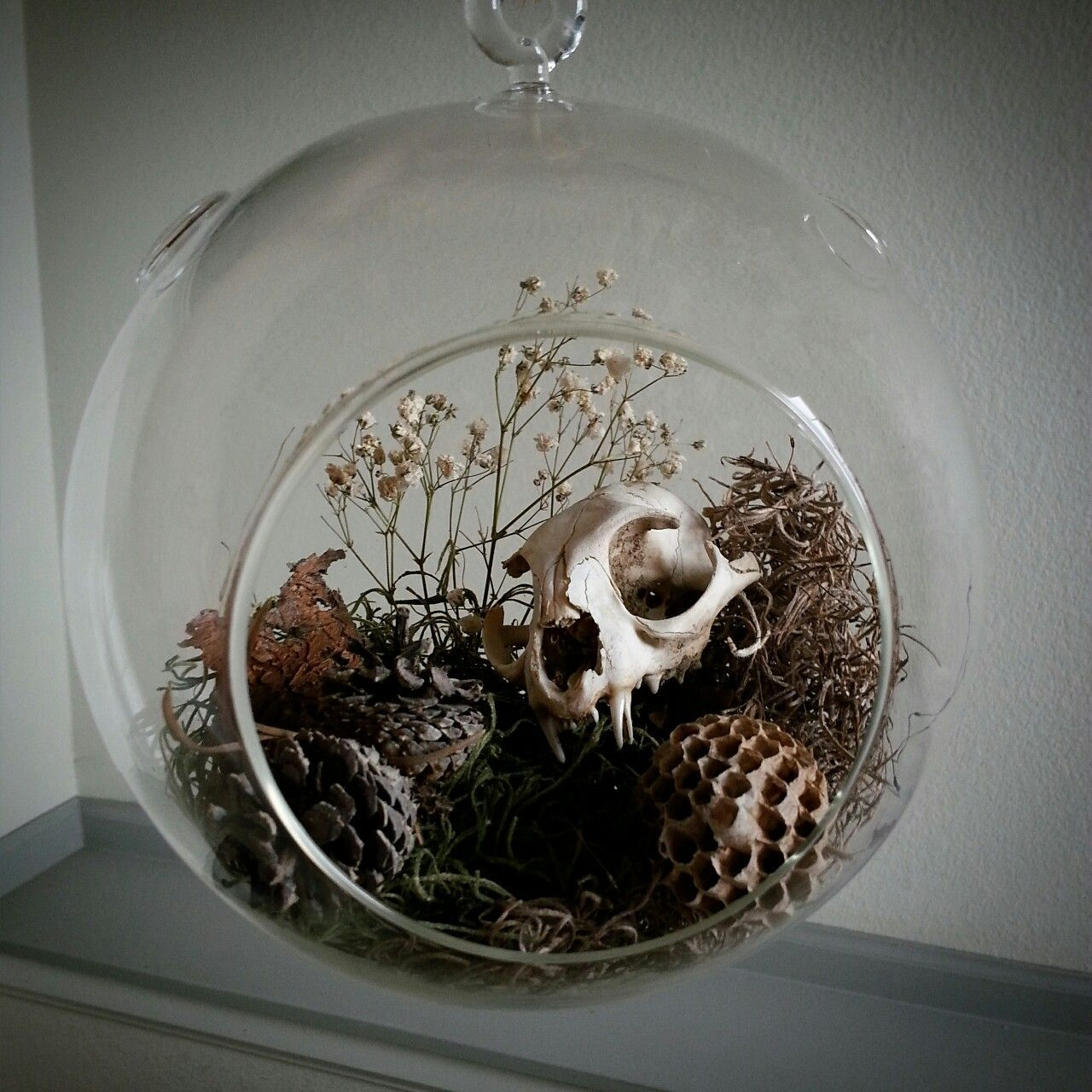 Image Result For Deer Skull In Terrarium Tattoo