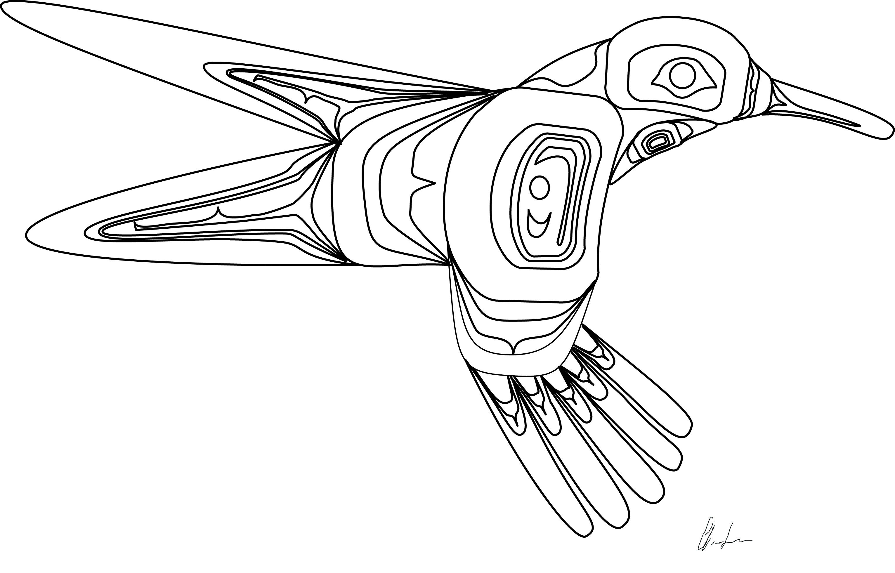 Hummingbird coloring book design. Northwest Coast First