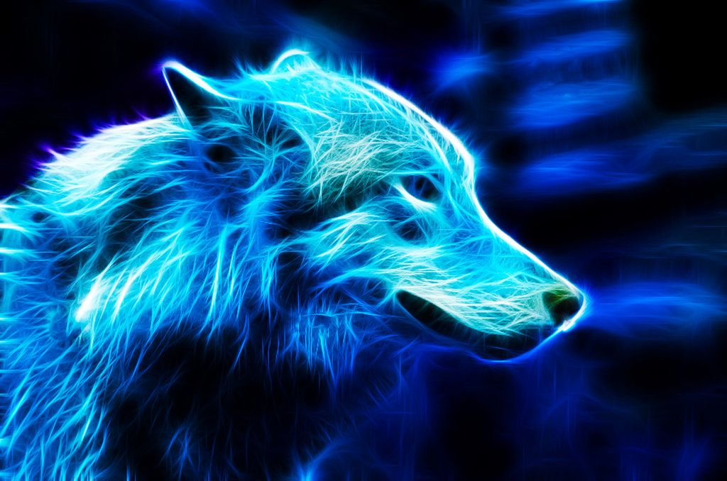 Blue Wolf By Ikyuvaliantvalentine On Deviantart Wolf Wallpaper Wolf Pictures Animal Posters