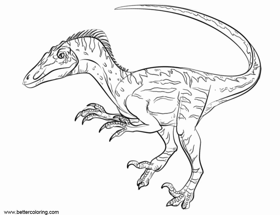 Coloring Pages For Jurassic Park Movies Tons Of Free Drawings To Color Print And Download Your Fa Dinosaur Coloring Pages Dinosaur Coloring Coloring Pages