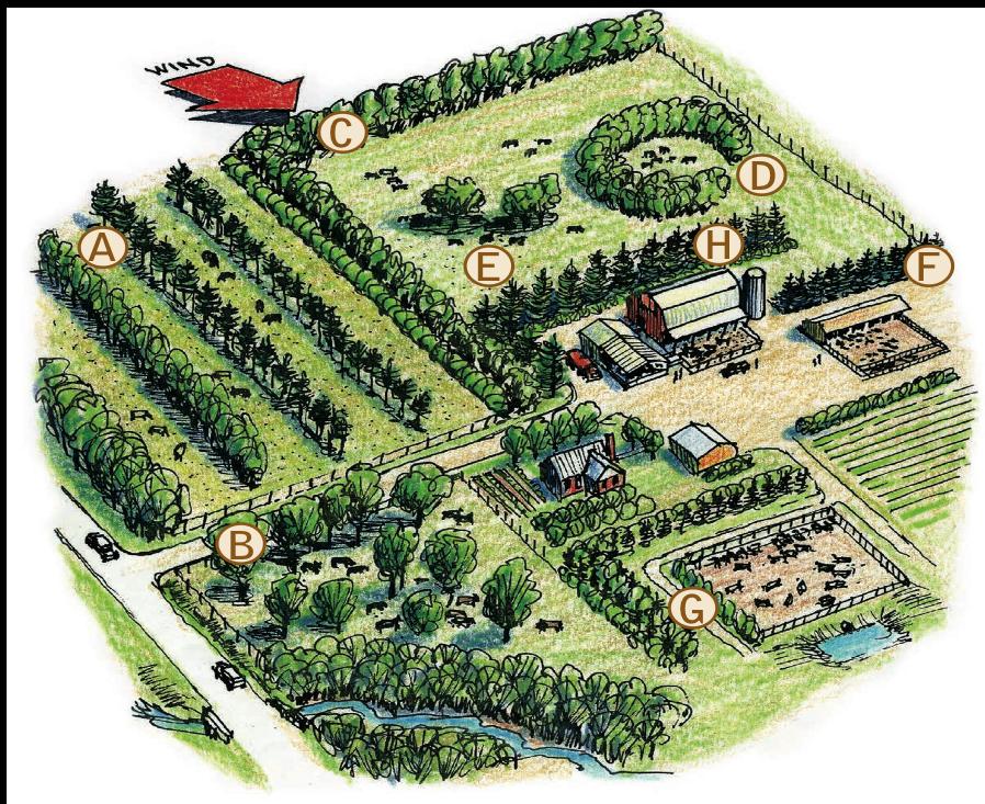Working Trees For Livestock Usda Report 2013 Farm Layout Farm Design Farm Plans