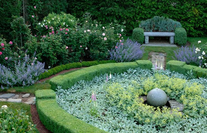 rose garden with great structure  Stacy Bass Photography