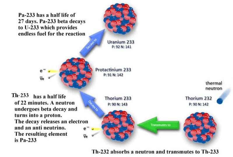 Th-232 to U-233: basic nuclear reactions to produce fissile