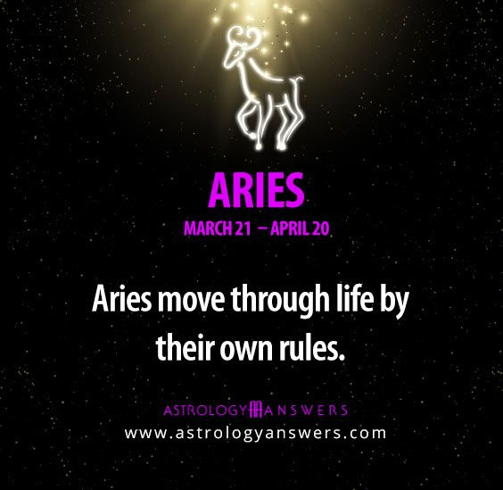 what are aries like