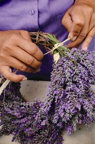 Photo of Making a Lavender Wreath