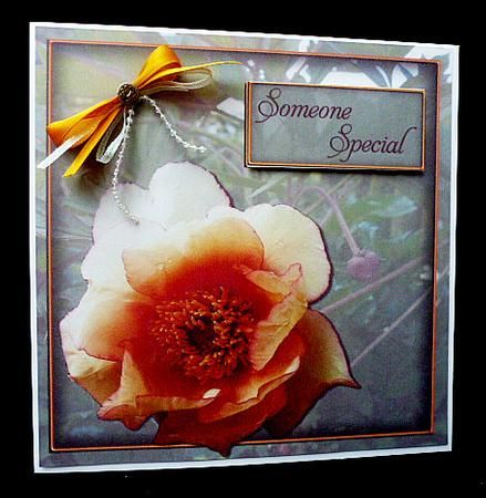 Peony Suprise on Craftsuprint designed by Debra Jenkinson - made by Diane Hitchcox - After printing out onto 240 gram card ,i mounted on a 8 by 8 card using DST,i finished by adding sentiment and a double ribbon beaded bow. - Now available for download!