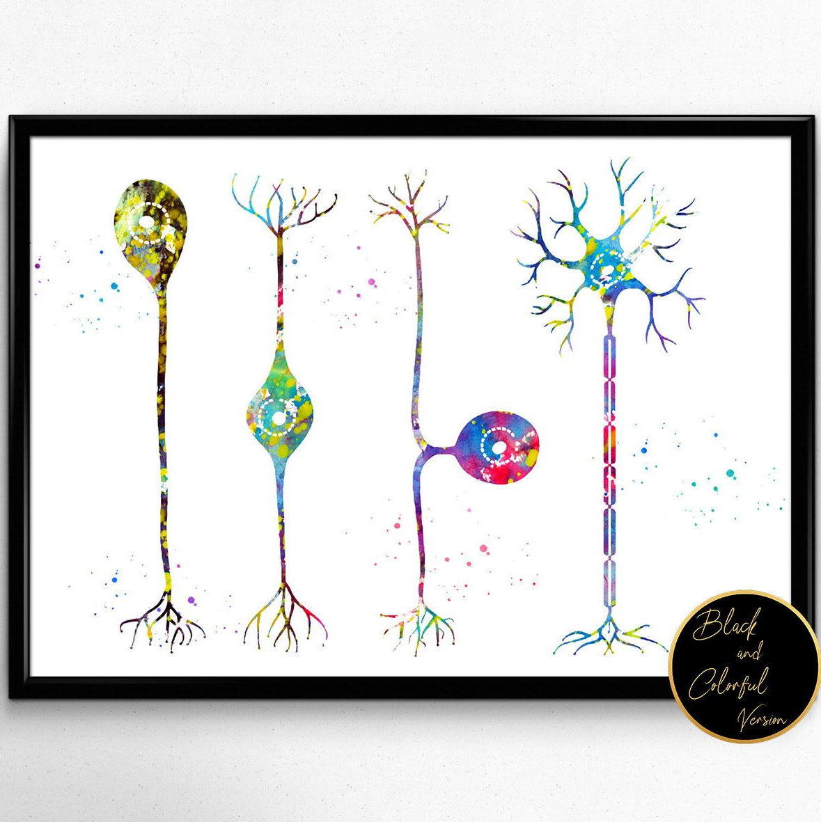 Four types of neurons,Watercolor, Brain Connections