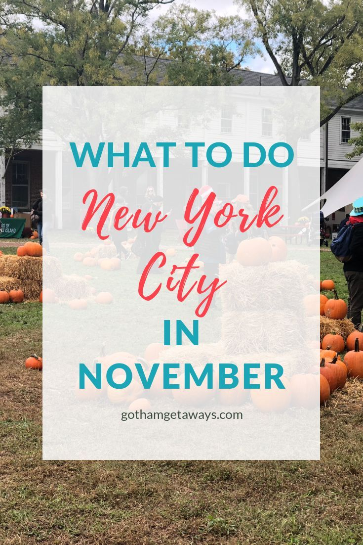 New York City in November is extremely exciting. There's tons to do like the iconic Macy's ...