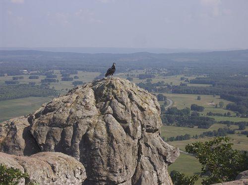 Petit Jean Mountain. Arkansas.