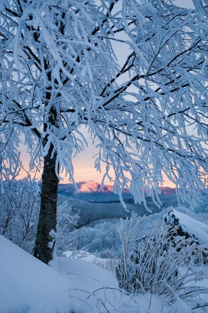 le paysage d 39 hiver en 80 images magnifiques hiver pinterest winter. Black Bedroom Furniture Sets. Home Design Ideas