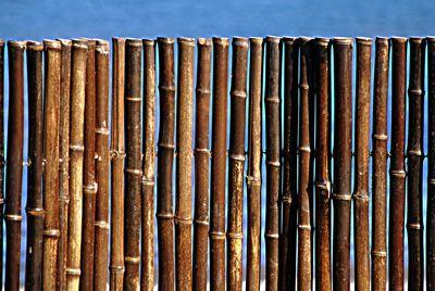 Natural Black Bamboo Fence 1 Quot D X 4 H X 8 L Bamboo Fence Black Bamboo Retaining Wall Fence