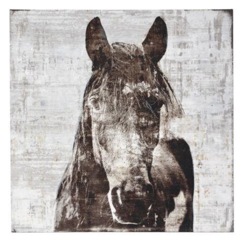 Gorgeous horse canvas