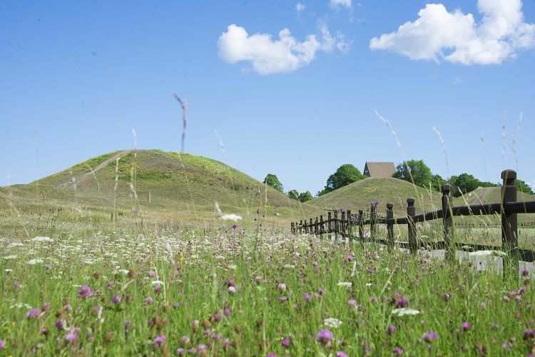 Gamla Uppsala museum - Burial mounds