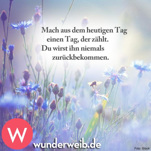 Pin Von Elisabeth Rath Auf Gute Sprüche Guten Morgen Spruch