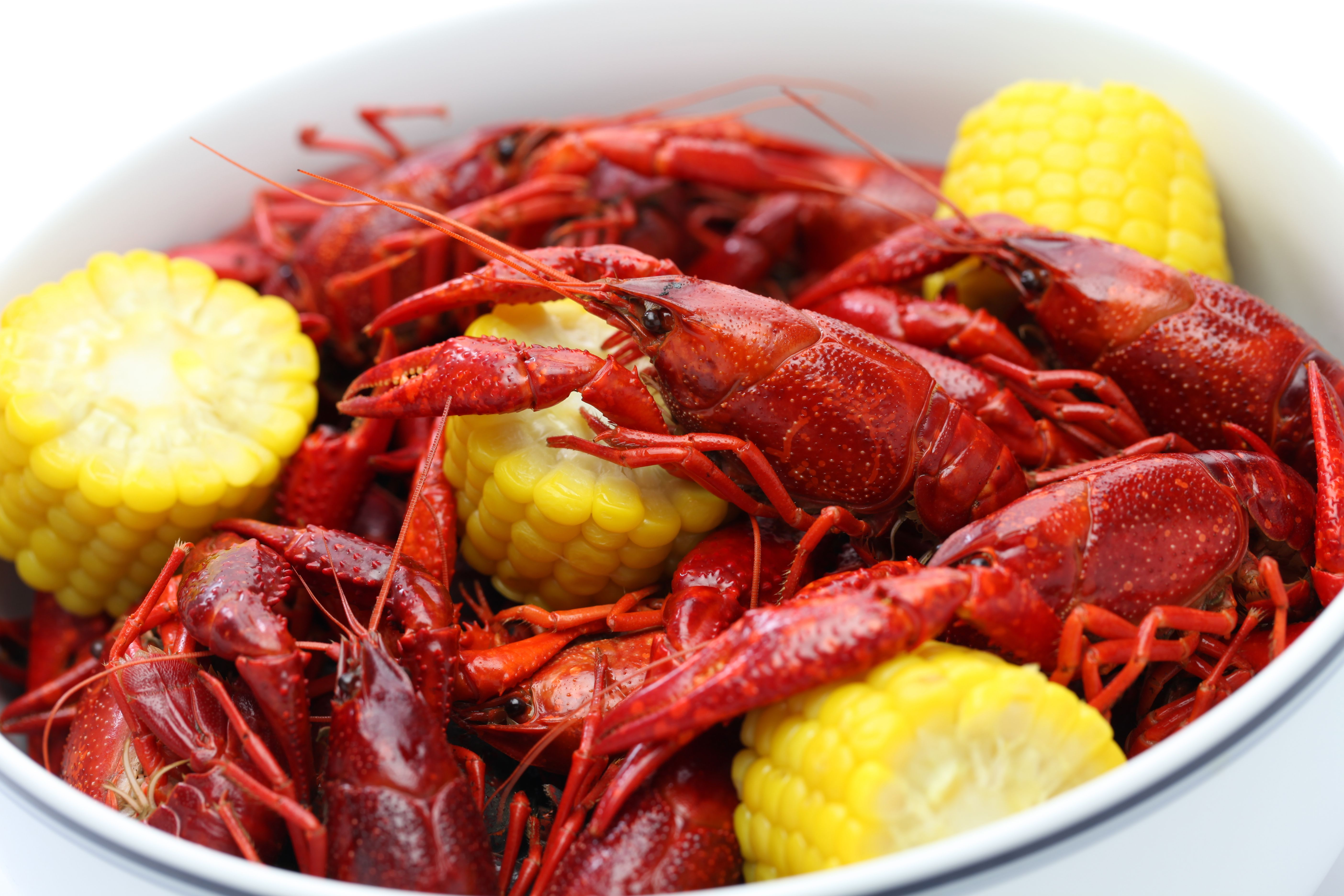 Who S Craving Some Crawfish Here S A Link To Houston S Top 15 Crawfish Places Https 4sq Com 2q16sy3 Hop I In 2020 Louisiana Cuisine Cajun Cuisine Crawfish Dishes