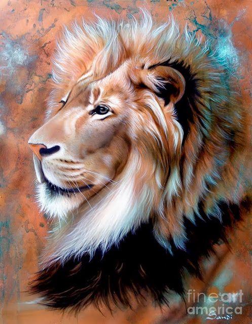 Retratos Animales Pintados Al Oleo Por Sandi Baker Pinturas De