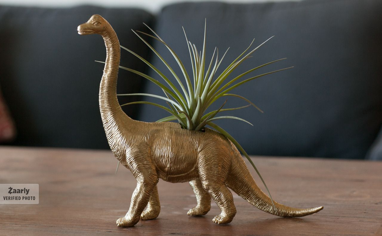 Dinosaur planter for the hipster in all of us from Kiersten Stevens on Zaarly