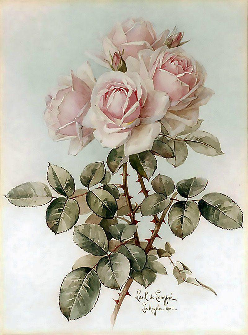 Для открытки, ретро картинка с цветами