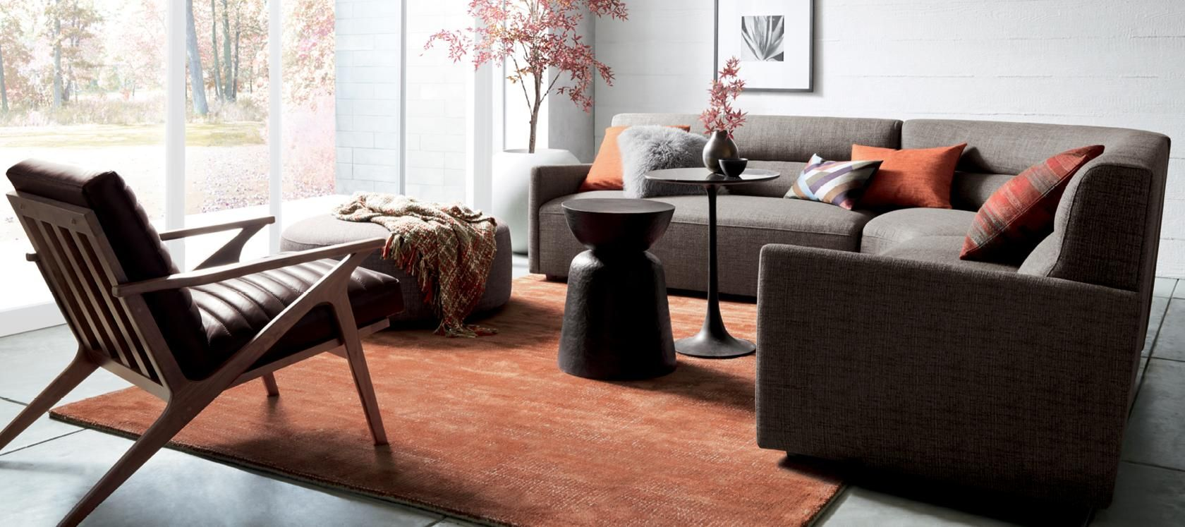 Living Room Rugs and Accent Rugs   Crate and Barrel   Home ...